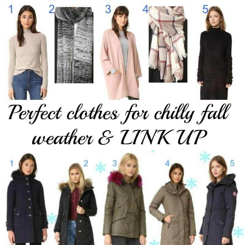 Perfect clothes for chilly fall weather and LINK UP