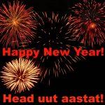 Happy New Year! Head uut aastat!