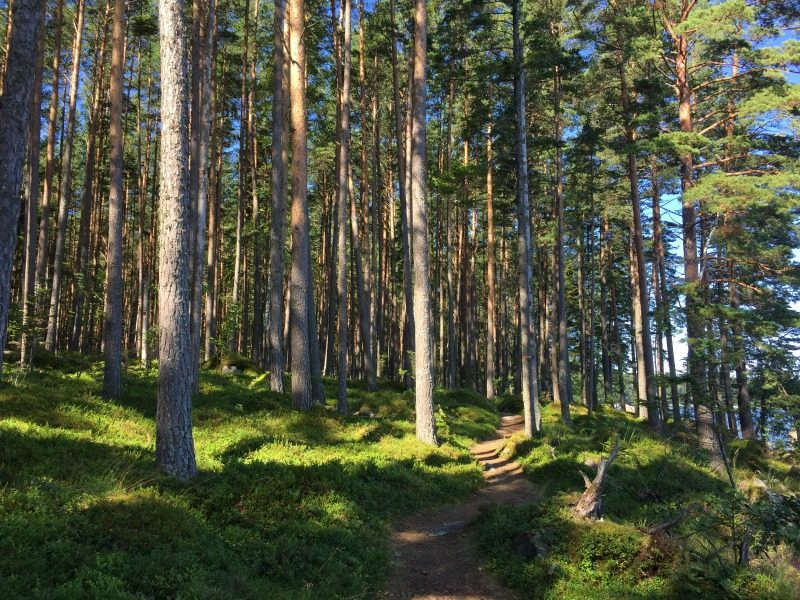käsmu hiking trail